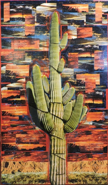 Surreal Cactus Series by Dave Newman